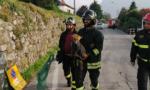 I pompieri salvano volpe caduta in un pozzo