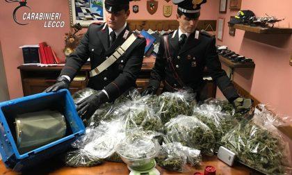 Spaccio a Lecco: da settembre sequestrati oltre 6 kg di droga