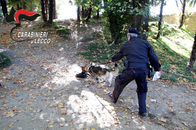 Controlli antidroga a tappeto: sale a 7 il numero di spacciatori arrestati in un mese FOTO