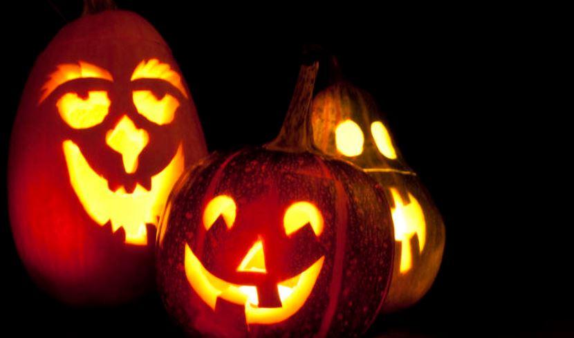 Zucca Di Halloween Piu Grande Del Mondo.Halloween 2019 Acquisti Boom 1 Kg Di Zucche A Testa A Como Lecco Prima Lecco
