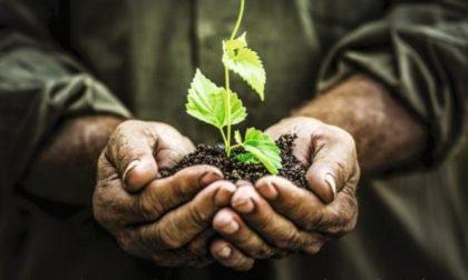 A Valmadrera la 69a Festa del Ringraziamento del Mondo Agricolo