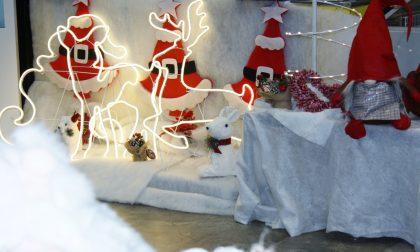 Regali originali per Santa Lucia e Natale con Scuolaufficio