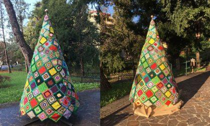 Lecco: che spettacolo gli alberi di Natale fatti a maglia foto