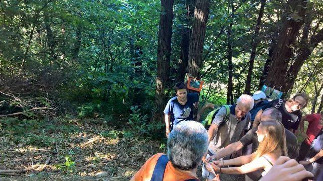 Natura Maestra di Vita: una domenica alla scoperta del bosco