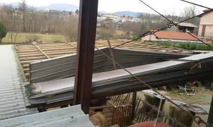 """Bufera di vento: """"Raffiche fortissime che hanno spaventato gli animali, poi il tetto è volato via"""""""
