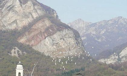 I colombi in volo su Calolzio nei primi giorni di primavera FOTO
