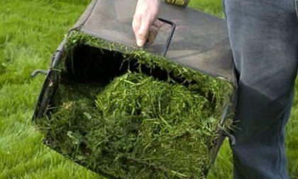 Piattaforma ecologica, aperture straordinarie per il verde