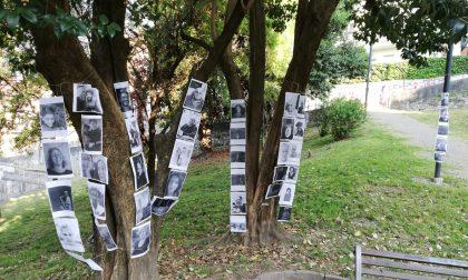 """25 aprile senza cortei, ma tanti calolziesi sono """"in strada"""" grazie alle foto"""