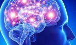 Lesioni cerebrali: il progetto dell'IRCCS Medea con gli studenti IMA di Lecco