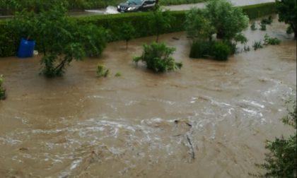 Il maltempo fa danni: esonda il Molgora, fiumi di fango in diversi paesi FOTO e VIDEO