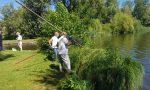 Moria di pesci nel lago di Sartirana FOTO E VIDEO