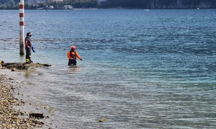 Proseguono le ricerche della giovanissima Fatou, dispersa nel Lago da giovedì. E il Lario restituisce un'altra salma
