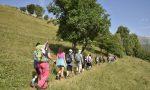 Un'estate da vivere nel cuore delle Grigne: l'escursione turistica-culturale FOTO