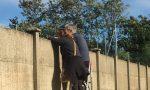 Il calcio ai tempi del Covid, genitori assiepati all'esterno (con tanto di scala) LE FOTO