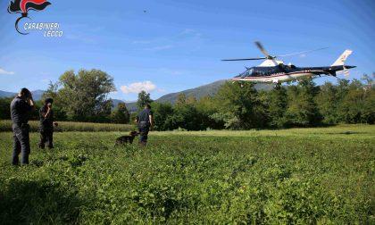 Maxi blitz contro lo spaccio: in azione anche l'elicottero  e i cani antidroga FOTO