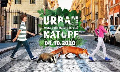 """""""Natura in città"""" con il WWF Lecco"""