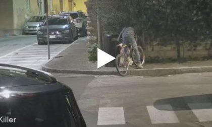 Non si scappa alle fototrappole: incivili sanzionati VIDEO