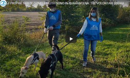 Virus e animali: 200 cuccioli presi in carico dai volontari perchè i padroni sono malati TRE STORIE DI SOLIDARIETA' – VIDEO