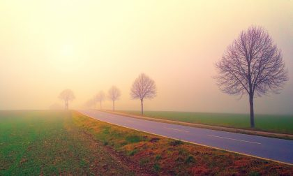 Cieli perlopiù soleggiati, con qualche nebbia o foschia   Meteo weekend