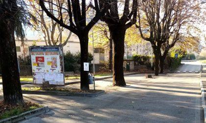 Silea, servizio di pulizia mirato nel Comune di Malgrate