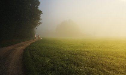 Soleggiato e temperature miti, ma ancora nebbie e foschie   Meteo Lombardia