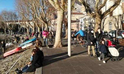 Cala la curva dei contagi a Lecco: 444 casi  nell'ultima settimana