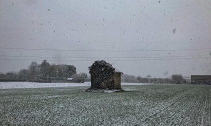 Primi fiocchi di neve in pianura nel Lecchese  PREVISIONI METEO, FOTO E VIDEO