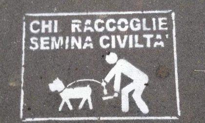 Esame del Dna sulle cacche dei cani che insozzano il paese
