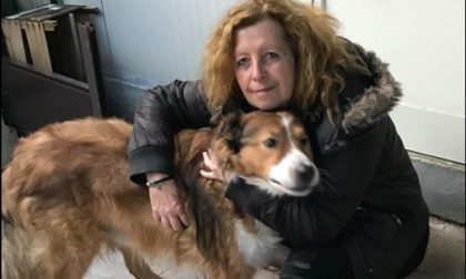 Incidente mortale in autostrada: addio all'animalista Elisabetta Barbieri. Il ricordo di Michela Vittoria Brambilla