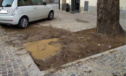 """""""Piazza Frà Cristoforo, dopo i lavori.. qualcosa non quadra"""""""