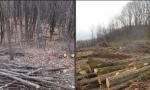 Riqualificazione forestale del Parco Monte Barro, se ne parla in un incontro web