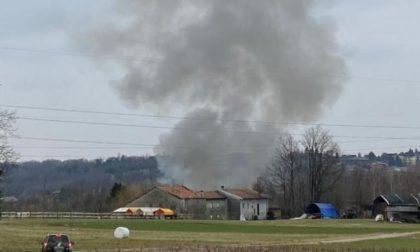 Dopo l'incendio al canile di Olgiate la solidarietà: aperta la raccolta fondi