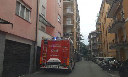 Ruspa ribaltata, morto il 70enne soccorso dietro il parco comunale al Porto