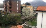 Risveglio particolare…. fiocchi di neve su Lecco il 19 marzo