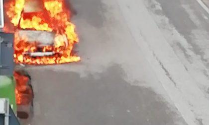Un'auto carbonizzata, per domare le fiamme ci è voluta un'ora