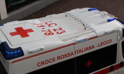 Cittadinanza Attiva in Pandemia: i ragazzi della De Amicis e della Stoppani primeggiano nel contest della Croce Rossa