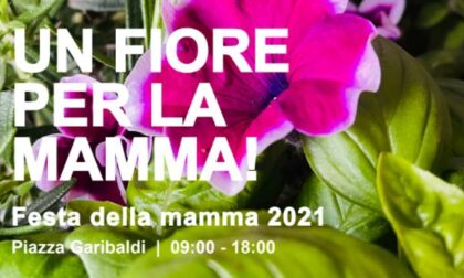 Festa della mamma: raccolta fondi con la Cri di Lecco