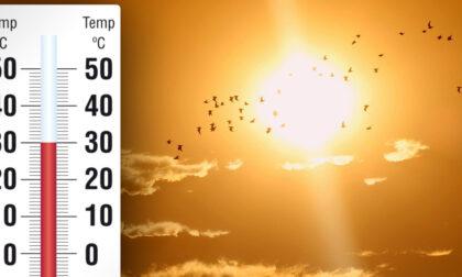 L'estate sta arrivando: nei prossimi giorni picchi di 30° | METEO