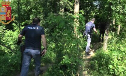 Spaccio nei boschi: arrestato un 35enne