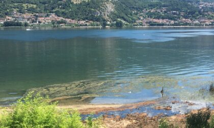 Fondi da Regione Lombardia per migliorare la qualità delle acque dei fiumi e dei laghi lecchesi