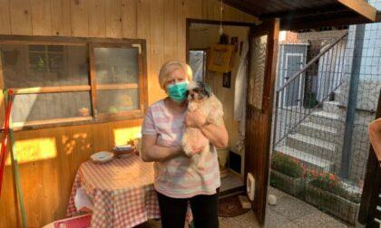 Super gattara si occupa di 200 gatti, ora ha bisogno di aiuto