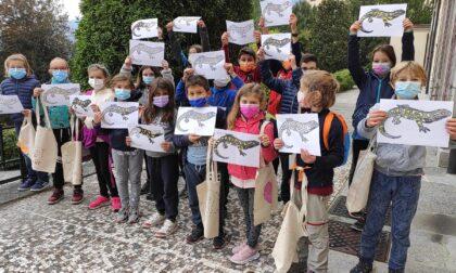 Bimbi sul Barro e a Lecco si riscopre il verde urbano: doppio appuntamento col Wwf